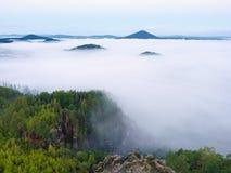 Пышный тяжелый туман в ландшафте Туман осени сметанообразный в сельской местности Холм увеличенный от тумана, Стоковая Фотография RF