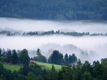 Пышный тяжелый туман в ландшафте Туман осени сметанообразный в сельской местности Холм увеличенный от тумана, Стоковая Фотография
