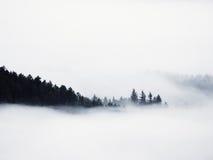 Пышный тяжелый туман в ландшафте Туман осени сметанообразный в сельской местности Холм увеличенный от тумана, Стоковое Изображение RF