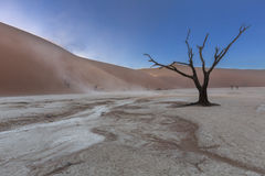 Пылевая поземка ветра в Dooievlei Стоковая Фотография RF