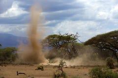 Пыльная буря в национальном парке, Кении Стоковые Изображения