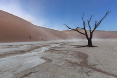Пыльная буря в Dooievlei Стоковые Изображения
