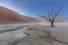 Пыльная буря в Dooievlei Стоковые Фотографии RF