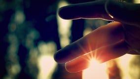 Пыль Солнця сток-видео