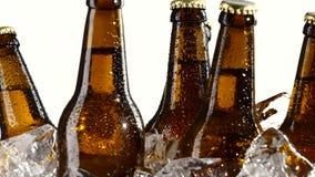 Пьяное пиво в темных бутылках стоит в льде Белая предпосылка конец вверх видеоматериал