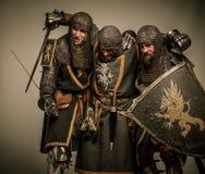 Пьяные рыцари стоковое фото