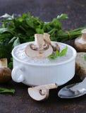 Пюре супа гриба с свежими champignons Стоковые Изображения RF