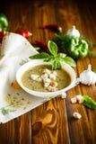 Пюре супа от различных овощей и грибов Стоковое Фото