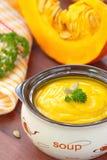 Пюре супа тыквы Стоковое фото RF