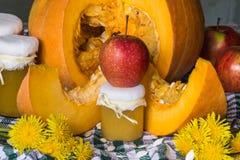 Пюре тыквы (или варенье) с яблоком на предпосылке отрезанной тыквы Стоковое Изображение