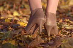 Пятка женщины на листьях осени Стоковое фото RF
