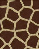 пятна giraffe шерсти большие короткие Стоковые Фото