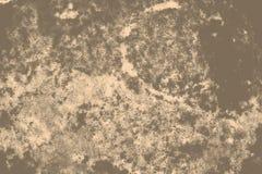 Пятна Grunge коричневые Стоковое фото RF