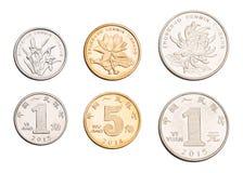 Пятые установленные монетки RMB Стоковое Изображение RF