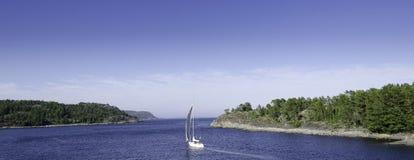 Плавание лета Стоковые Фото