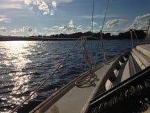 Плавание лета Стоковая Фотография RF