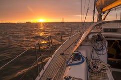 Плавание захода солнца Стоковое фото RF