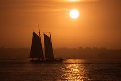 Плавание захода солнца Стоковое Изображение RF
