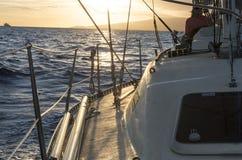 Плавание захода солнца Стоковые Фотографии RF