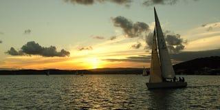 Плавание захода солнца Стоковые Фото