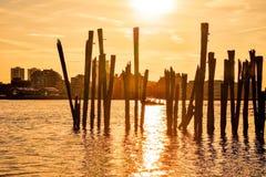 Плавание Sunsetset Стоковое Изображение RF