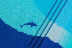 Плавательный бассеин взгляд сверху Стоковое Фото