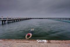 Плавать в бассейне океана Стоковое фото RF