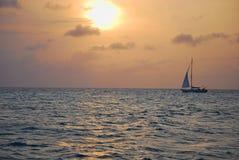 Плавать в заходе солнца Стоковая Фотография