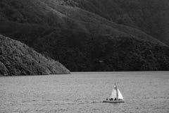 Плавать в звуках Marlborough Стоковое Изображение RF