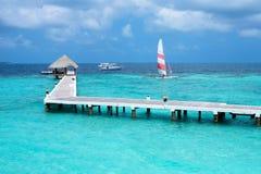 Плавать в море Мальдивов Стоковая Фотография