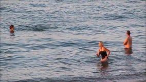Плавать в океане сток-видео
