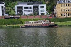 Плавать в Реке Neckar Стоковая Фотография RF
