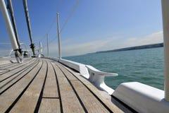 Плавать в солнце Стоковая Фотография RF