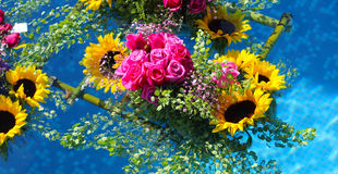 Плавать цветков стоковые фотографии rf