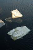 Плавать льда стоковая фотография rf