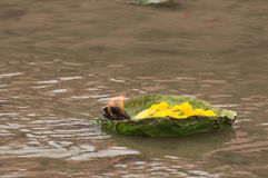 Плавая божество Стоковое фото RF