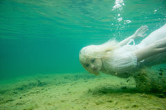Плавая женщина Подводный портрет Девушка в белом заплывании платья в озере Зеленые морские заводы, вода Стоковая Фотография RF