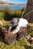 Плавая острова на озере Titicaca Puno, Перу, Южной Америке, покрыванной соломой домой Плотный корень тот заводы Khili стоковое фото