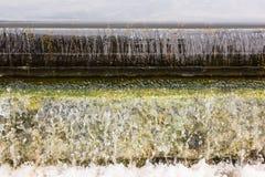Плавая шуга Стоковое Изображение RF