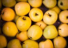 Плавая яблоки, 2007 Стоковое Изображение RF