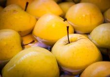 Плавая яблоки 2, 2007 Стоковые Фотографии RF