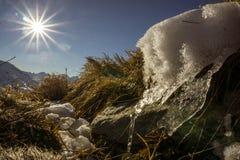 Плавя лед в солнце Стоковое Изображение RF
