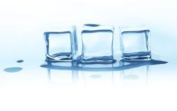 Плавя кубы льда с отражением изолированные на белизне Стоковая Фотография