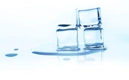 Плавя кубы льда с отражением изолированные на белизне Стоковое фото RF