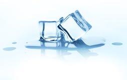 Плавя кубы льда с отражением изолированные на белизне Стоковое Изображение