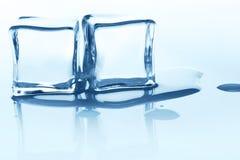Плавя кубы льда с отражением на белизне Стоковое фото RF