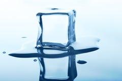 Плавя куб льда с отражением изолированный на белизне Стоковые Изображения RF