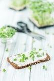 Плавленый сыр покрыл с свежим крессом & x28; селективное focus& x29; Стоковое Фото
