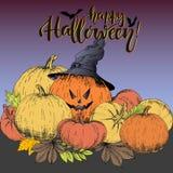 Плакат вектора на хеллоуин Джек-o-фонарик тыквы с шляпой ведьмы с комплектом тыкв Польза для партии или поздравительной открытки Стоковое Фото