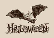 Плакат винтажной летучей мыши хеллоуина горизонтальный, знамя, заголовок, почта, I стоковое изображение rf